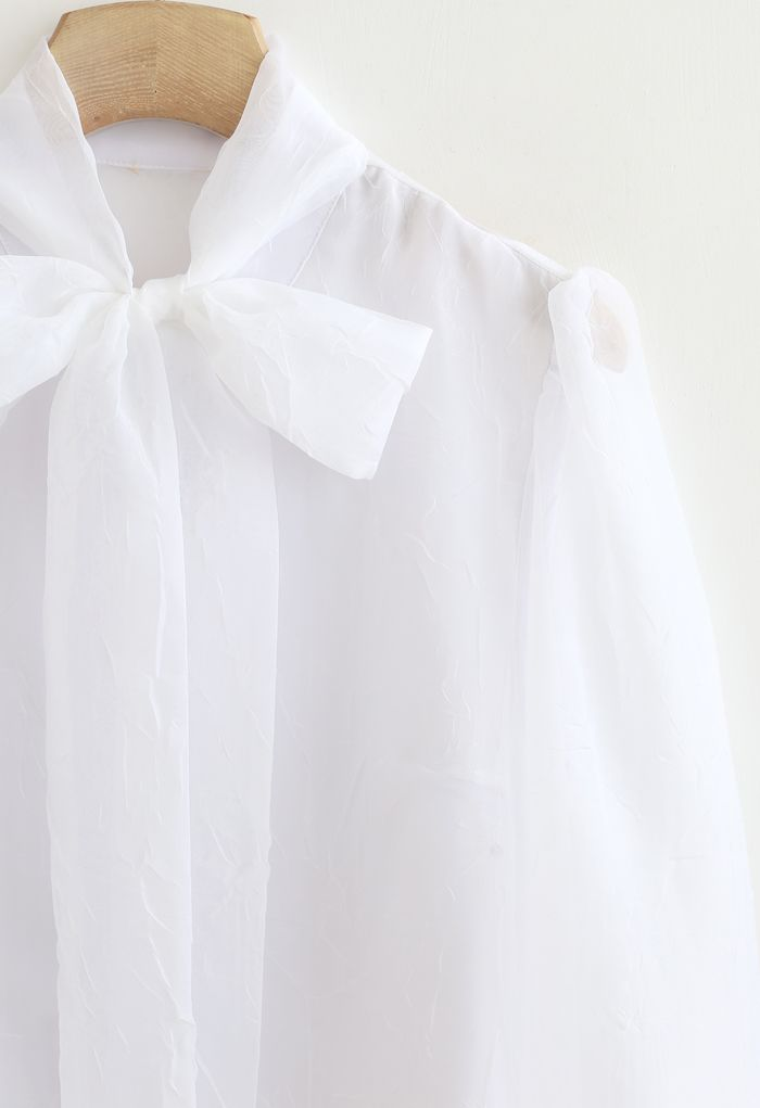 Sheer Bowknot Button Down Shirt in White