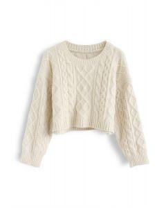 Braid Texture Fuzzy Crop Knit Sweater