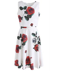 Dreaming of Red Rose Crop Top and Skirt Set