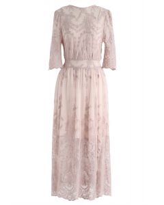 Spotlight on Me Embroidered Mesh Dress in Blush